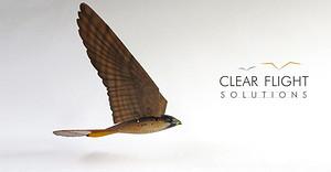 Clear Flight Solutions logo.jpg
