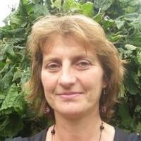 Sandra Wijnant-Timmerman