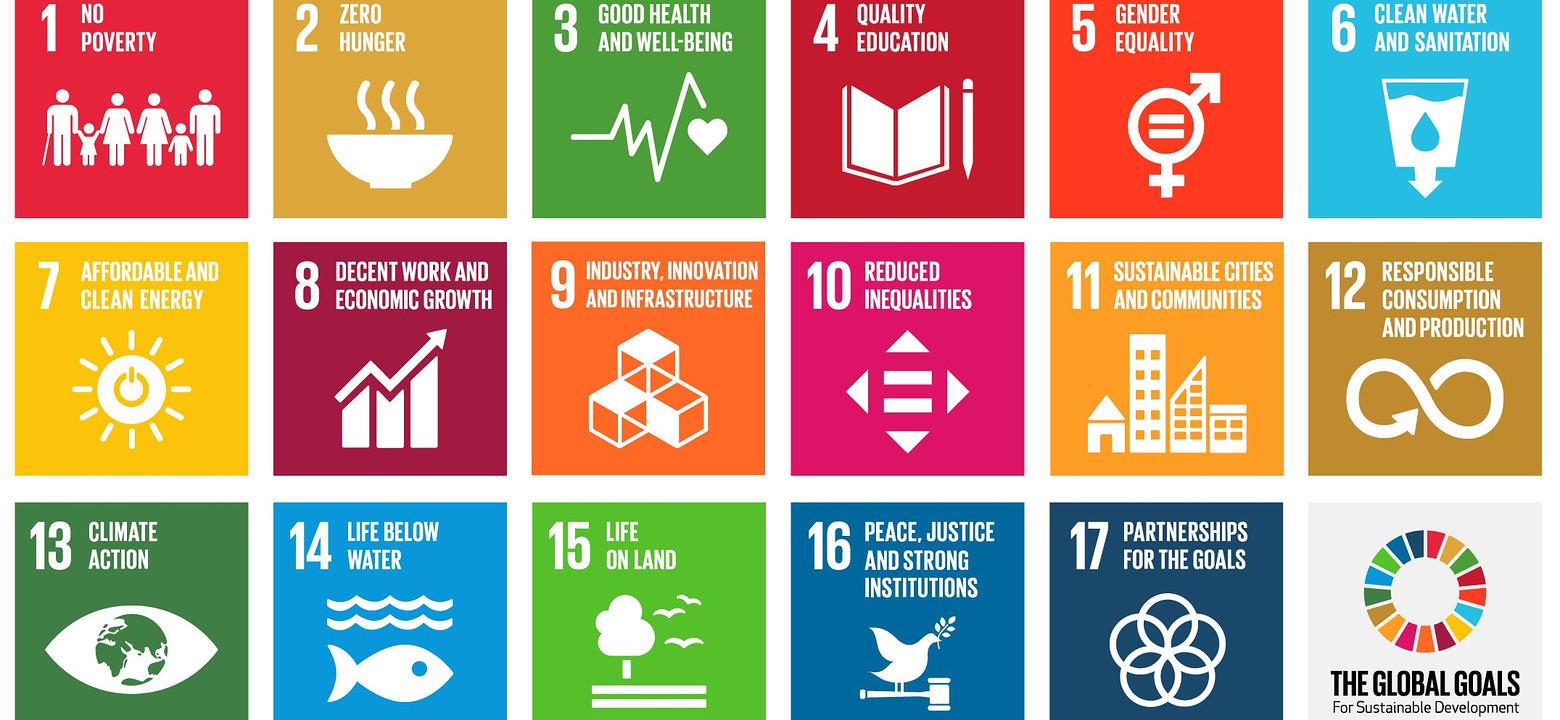 SDG.jpeg