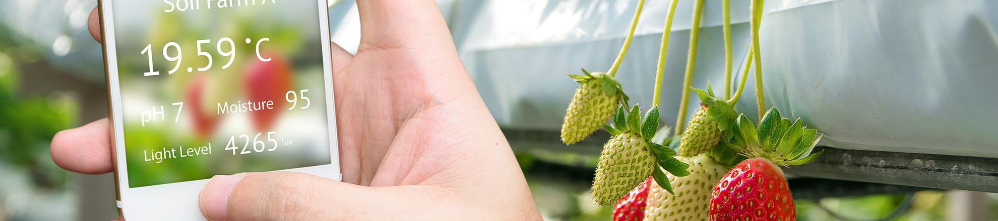 Sensoring tuinbouw jaarimpressie 2019
