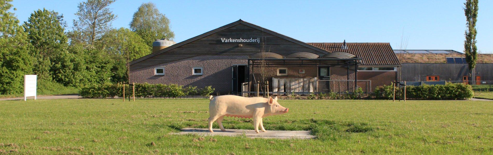 hbo studie Varkens en pluimveehouderij Aeres Hogeschool Dronten