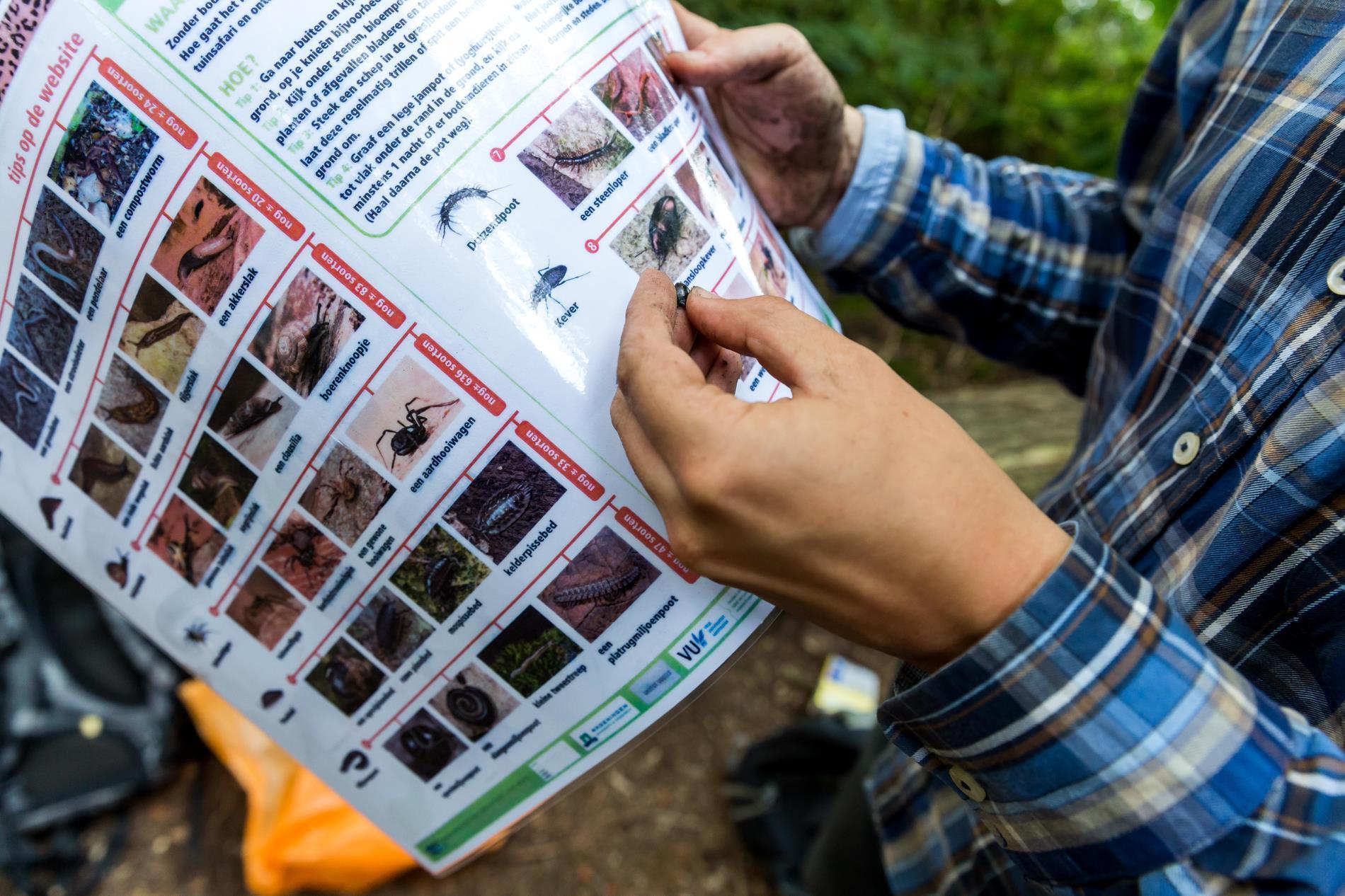 Aeres MBO Toegepaste biologie veldonderzoek insecten