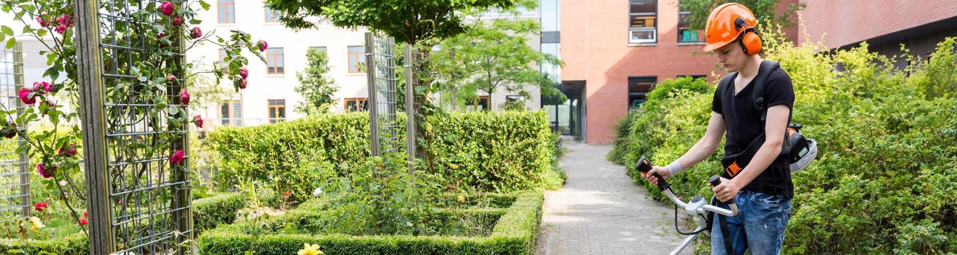 Aeres MBO Groene ruimte gras onderhoud