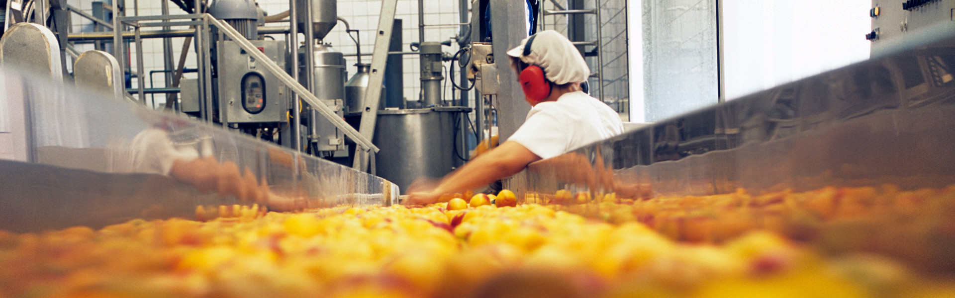 Voeding voedsel technologie